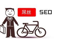 seo屌丝-如何逆袭,做网站推广?