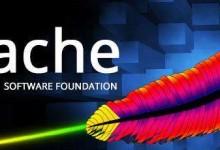 设置Apache服务器每天生成网站日志,方便查看