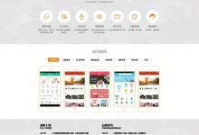 响应式橙色大气网络科技app开发公司网站模板