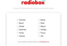 radio表单美化以及动画效果