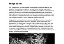 图像放大插件zoom.js