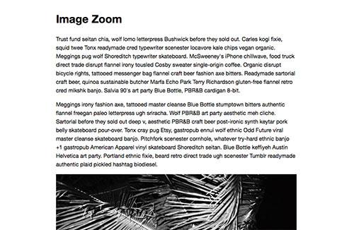 图像放大插件zoom.js -1