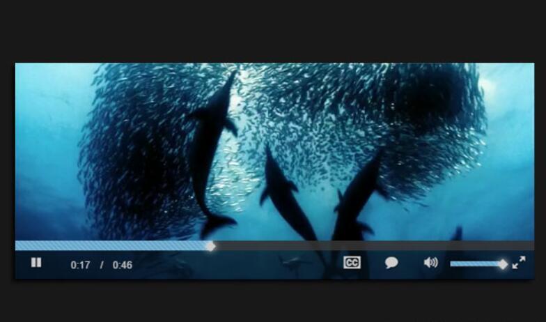 视频播放插件Video.js
